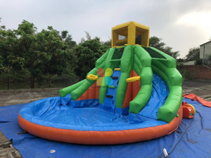 Backyard Inflatable Water Slide with Pool For Sale