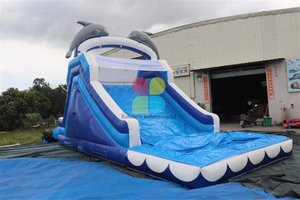 Mini Inflatable Ocean Dolphin Water Slide
