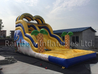 Outdoor Commercial Inflatable Moana Theme Water Slide Blow Up Vaiana Slide with Pool for Kids Children And Adult