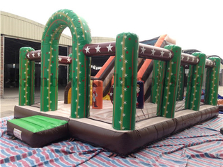Outdoor Commercial Inflatable Cactus Theme Bounce Playground