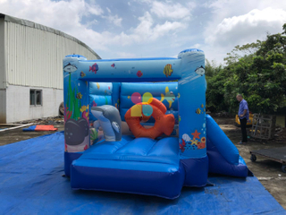 Indoor Inflatable Kids Bouncy Jumper for Sale