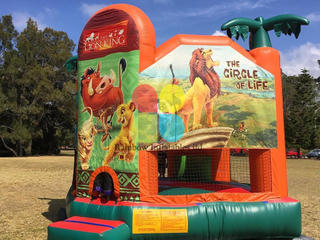 Simba and Nala jungle themed bounce with slide